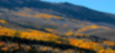 Walker Fall Color.JPG