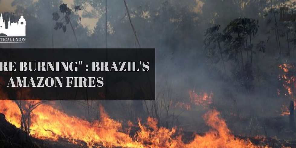 We Are Burning: Brazil's Amazon Fires