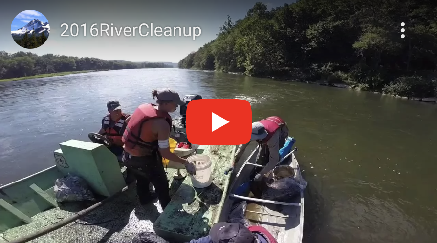 Allegheny River & Watershed Clean-up