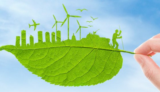 Want to Be Sustainable Business: Here What You Can Do