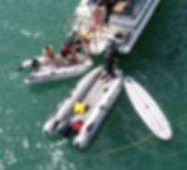 Takacat+range+stable+boarding+open+bow+i
