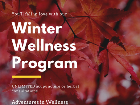 Winter Wellness Program