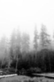 FoggyMtHood.jpg