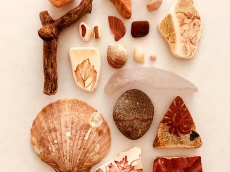 Coastal curations