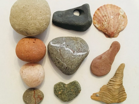 Stones, snakes and birdy bits.