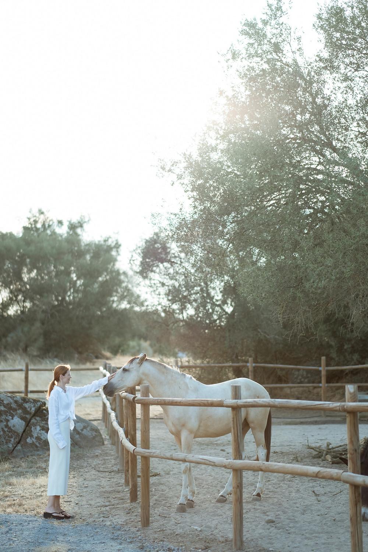São Lourenço do Barrocal cavalos