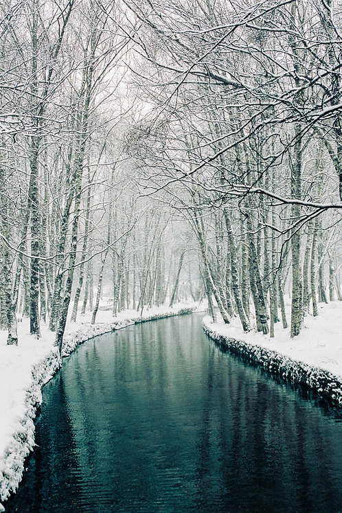 Snow River Photography