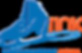 skyrink_logo_transparent.png