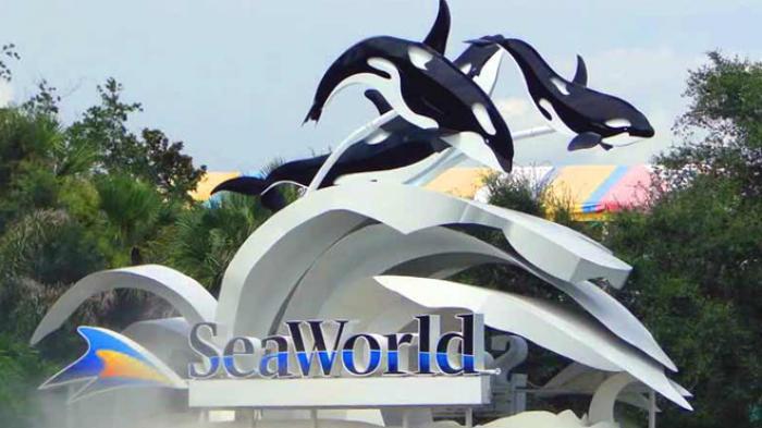 sea-world_20160325_093139.jpg