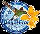 Beija-Flor de Nilópolis Carnaval 2017
