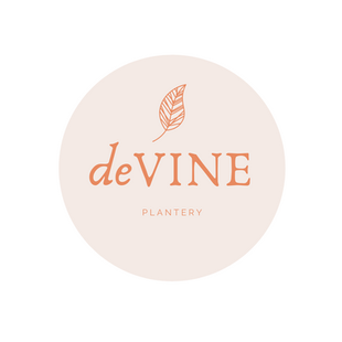 Introducing deVINE Plantery
