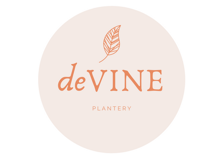 Introducing deVINE Plantery