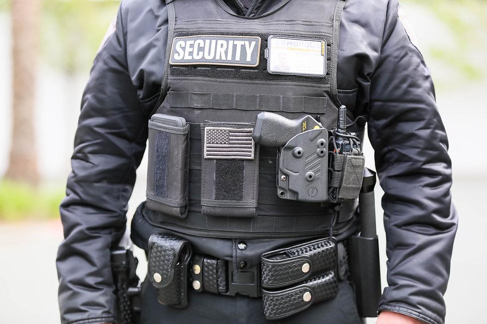 Armorous Security Mendocino and Sacramento