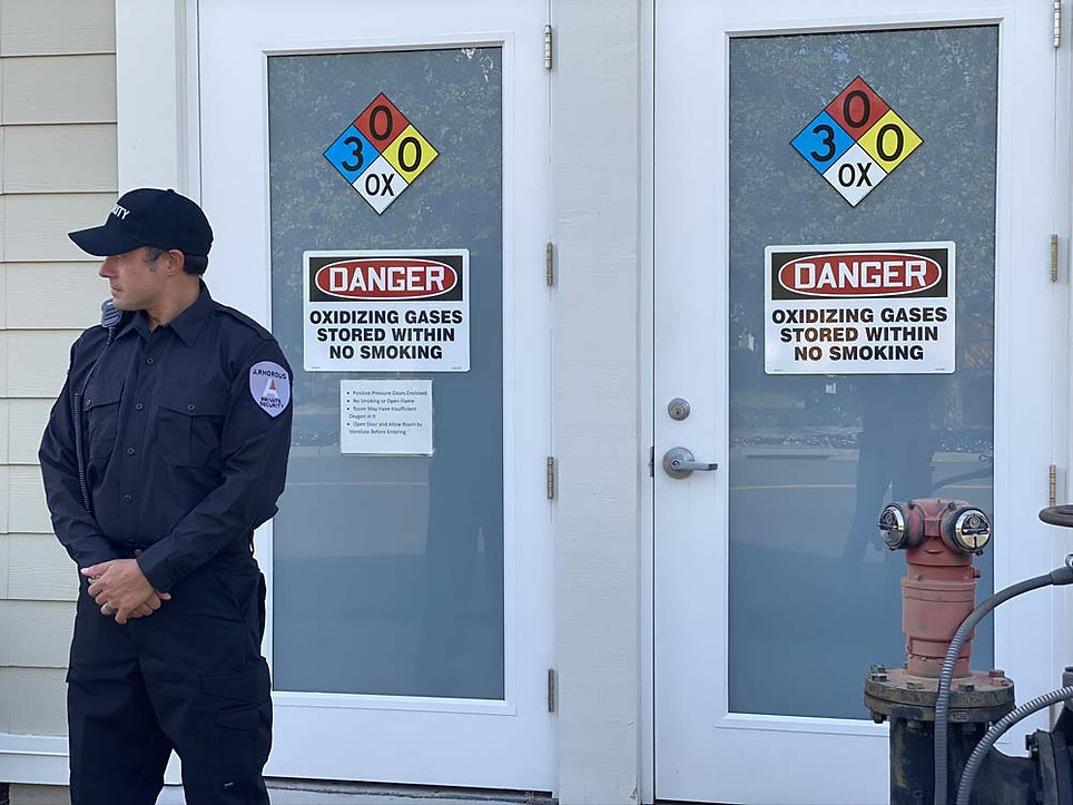 Armorous Security Emergency Security Services
