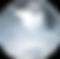 shutterstock_76884487%20(2)%20(1)_clippe