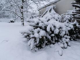 Havazás Monor 2018.01.21.