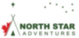 NSA logo Colour.jpg