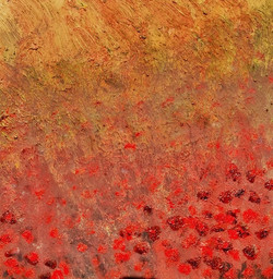 Bleeding Poppies 1 luik-1b