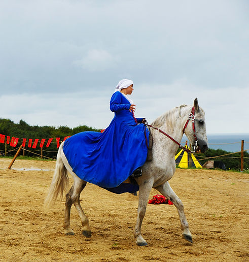 chevaux 22.jpg