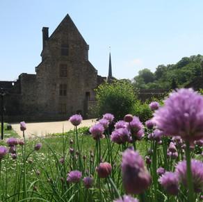 visite du chateau de Fougeres le 6 mai 201822.JPG