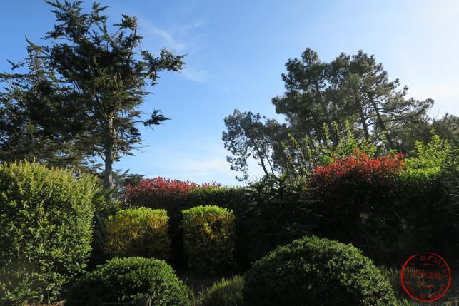 les plantations dans le parc du château