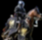 chevalier__médiévales__modifié.png
