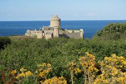 la vue sur le fort avec la fin des fleuraison des ajoncs dans le parc du chateau