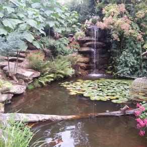 tropical parc 2013 (48).jpg