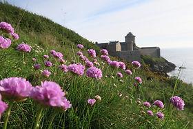 chateau_vue_d'ensemble_arméria14.JPG