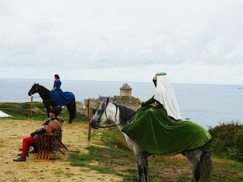 chevaux fort.jpg