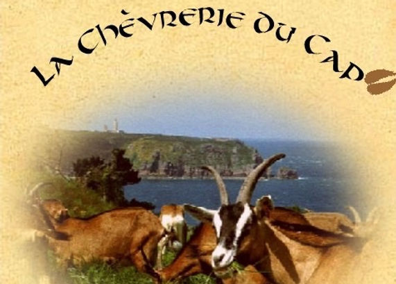 chevrerie du cap bretagne fort la latte roche goyon chateau chèvre