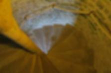 L'escalier à vis (colimaçon)