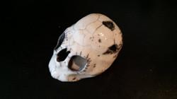 crâne aux esprits