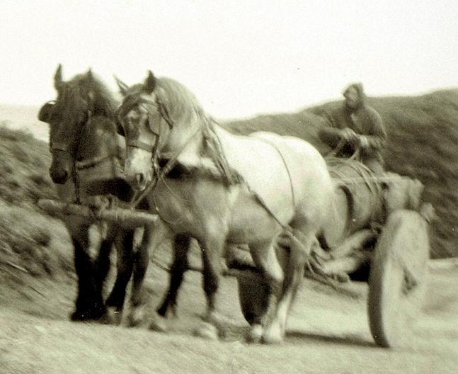 Vikings fort la latte Roche Goyon acteurs chevaux charrette roche Goyon