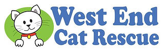 WECR Rectangular Logo color.JPG