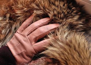 tan-gloves-4562830_1920.jpg