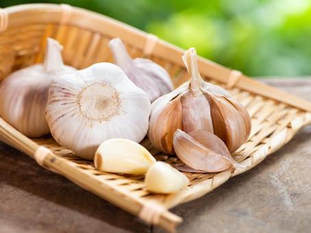 Aprenda a consumir alho para melhorar a imunidade