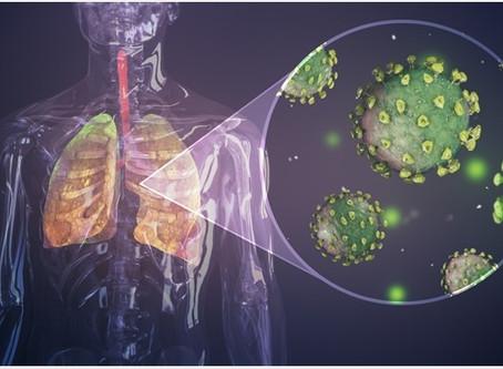 Estudos italianos mostraram que não é preciso ter anticorpos para derrotar o vírus.