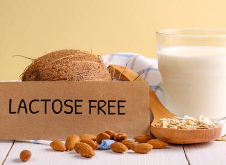 Receitas Para Intolerantes a lactose