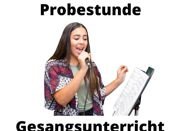 Probestunde Gesangsunterricht