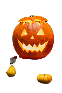 Santa pumpkins, halloween 2020 _edited.p