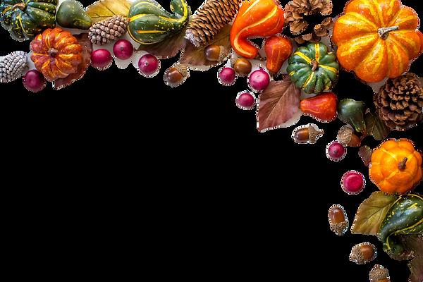 Pumpkin Spice Fall Border_edited.png
