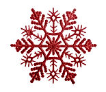 snowflakes isolated on white background.