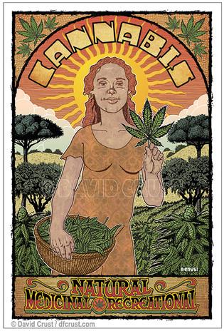 Cannabis Harvest Woman
