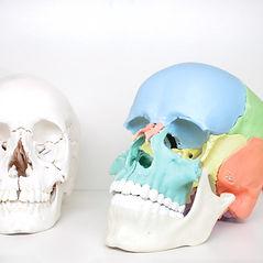 Praxis Nissen Falk Osteopathie