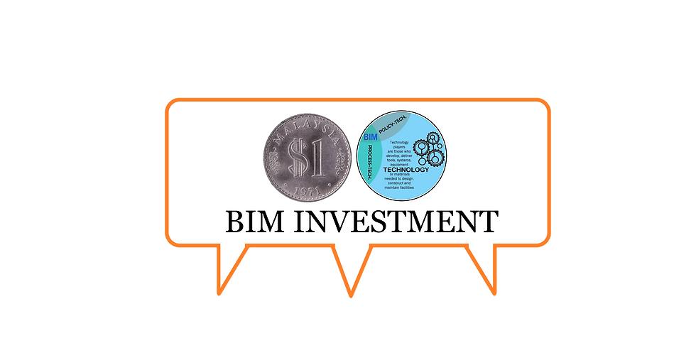 Investment in BIM (Cost-Output-Return)