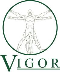vigor 5x5 - copy.jpg