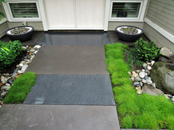 Contemporary Entryway Garden