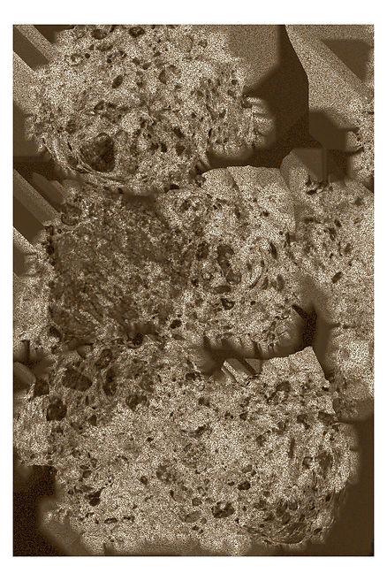 brown1.jpg