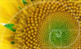 Illustration of spiral arrangement in na